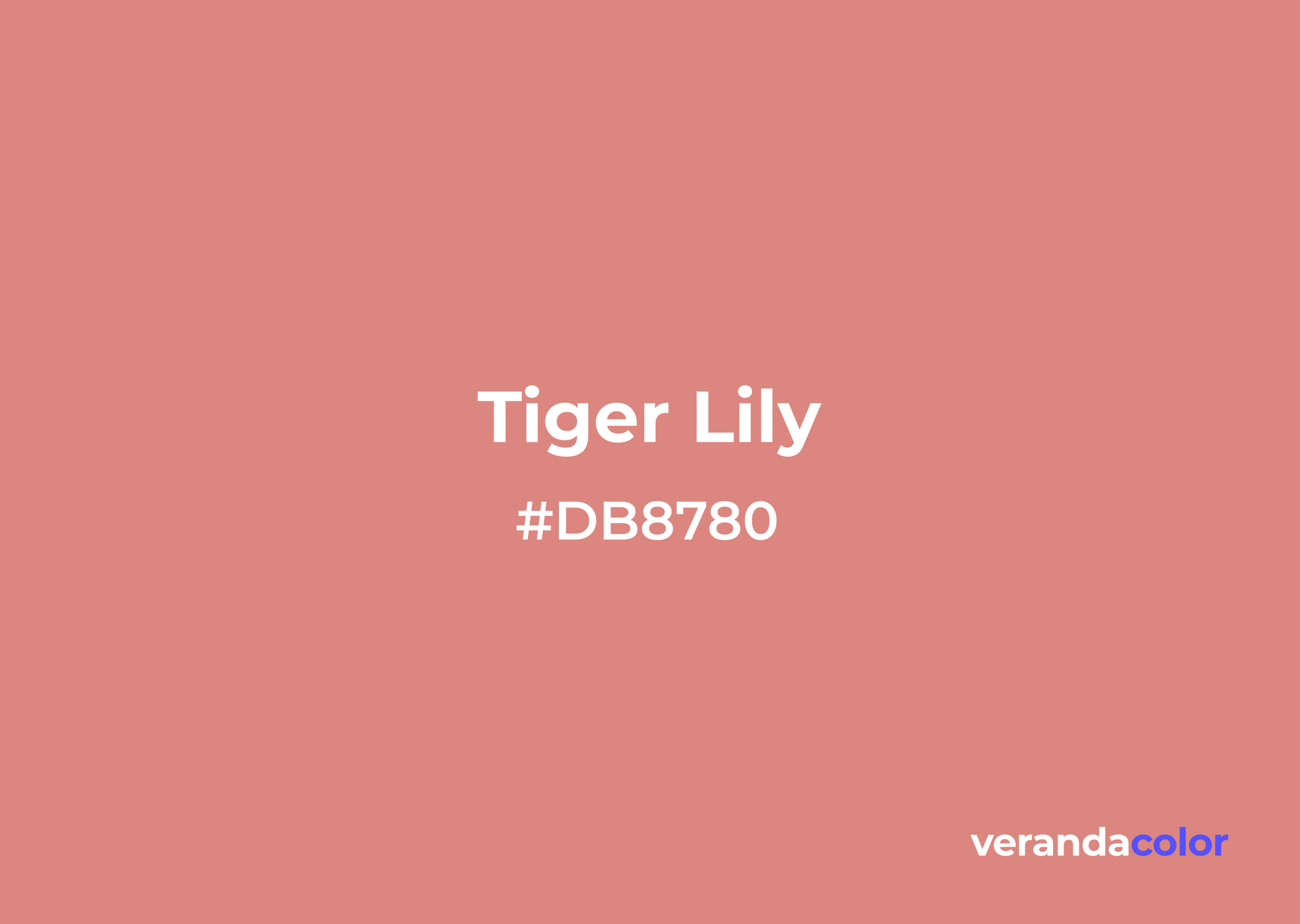 Tiger Lily Color